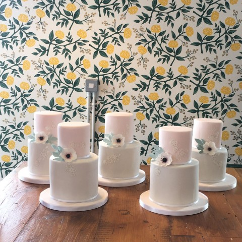 Two Tier Cake Class